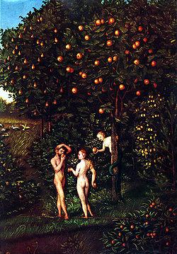 fruto prohibido2
