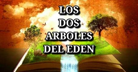 LOS DOS ARBOLES DEL GAN EDEN-ARBOL DE VIDA TORÁ