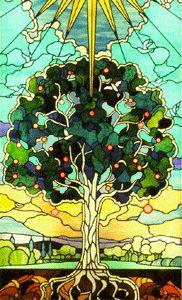 treeoflife5j