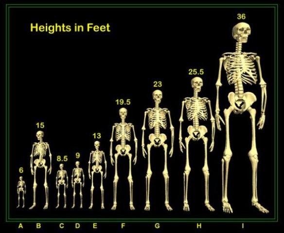 9_skeletons_pers5