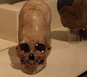 skull061113ax