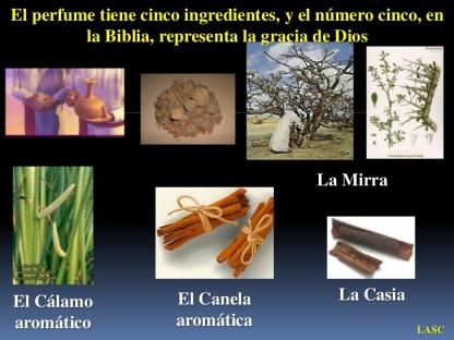 conf-exodo-302233-ex-no-30c-el-aceite-de-la-uncion-11-728