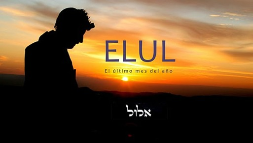 elulweb-18-08-15