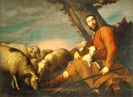 jacob ovejas