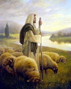 pastor-de-ovejas