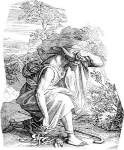 Moises 1.jpg
