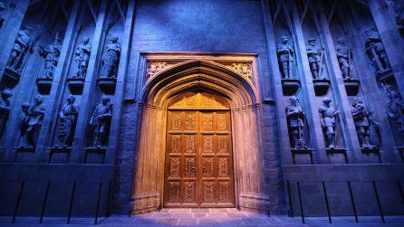 puerta-Hall-castillo-Hogwarts_TINIMA20120323_1025_3.jpg
