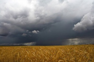 llueve1.jpg