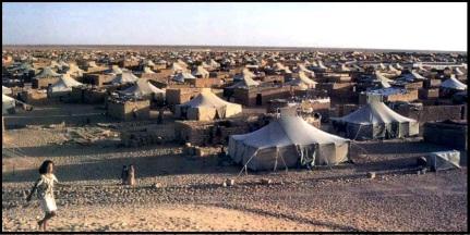 tiendas desierto.jpg
