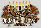 menorah_trees.jpg