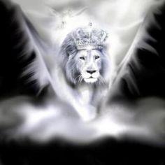 leon de la tribu.jpg