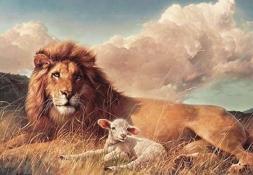 leon-y-cordero-imagen